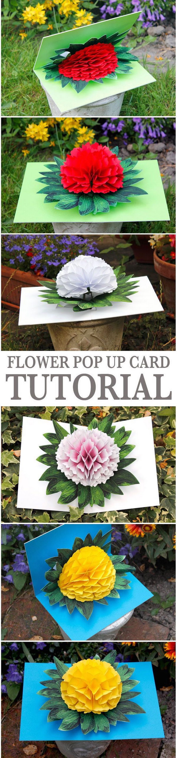 Flower Pop-up Card.