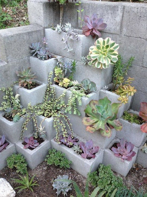Diy Backyard Ideas 15 diy ideas to create a heavenly backyard Cinder Block Succulent Garden