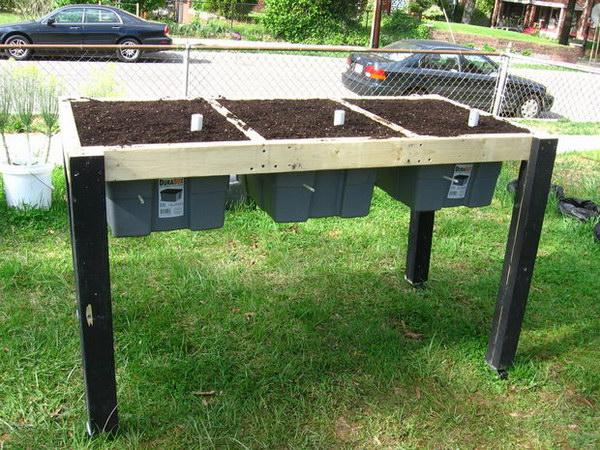 Self Watering Salad Table.
