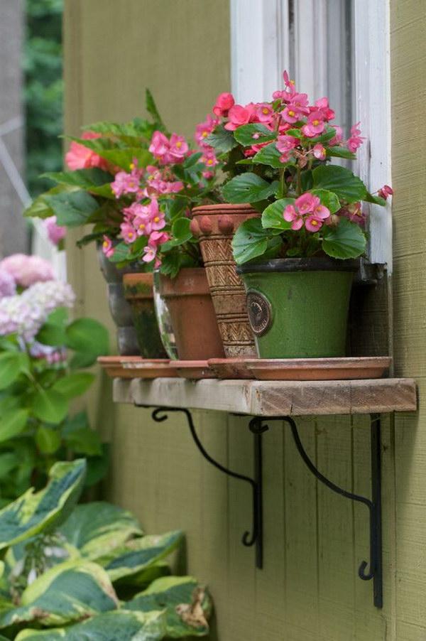 Window Box Alternative Pots on a Shelf.