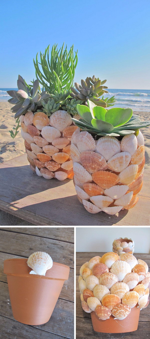 DIY Seashell Succulent Planter .