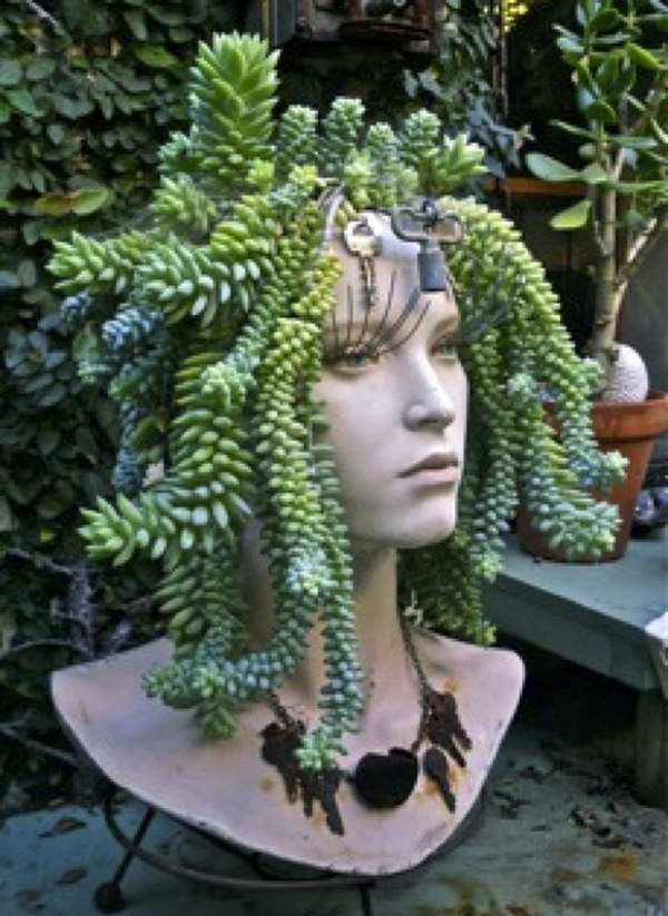 Creative indoor and outdoor succulent garden ideas 2017 mannequin head succulent planter sisterspd