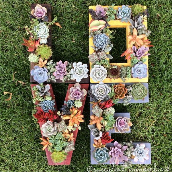 Letters Garden: Creative Indoor And Outdoor Succulent Garden Ideas 2017