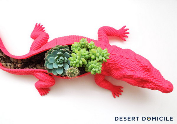 DIY Crocodile Succulent Planter.