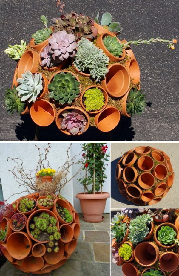 diy clay pot sphere for stunning succulents