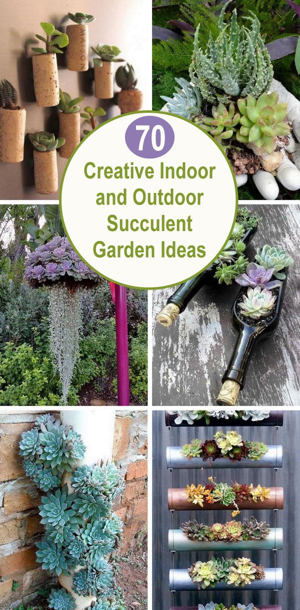 Ý tưởng vườn sáng tạo trong nhà và ngoài trời.