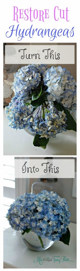 "Simple Way To Revive Droopy Hydrangeas. Reviving wilted cut hydrangeas with this trick! It really does work. Cut Trim the stems of your ""dead"" hydrangeas and soak them in cold tap water and wait a few hours. via"