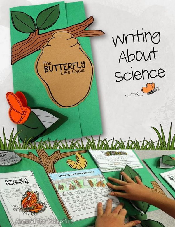 Butterfly Life Cycle Project for Kids.