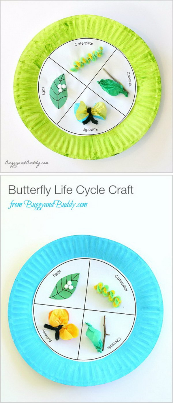 Butterfly Life Cycle Paper Plate Craft for Kids.