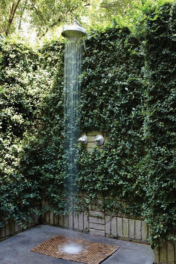 Outdoor Shower with Green Plant Fence.