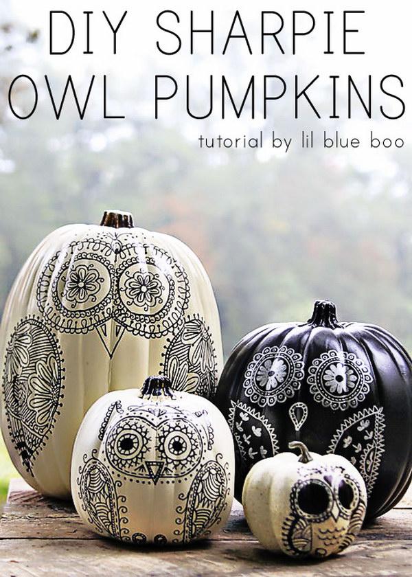 DIY Shappie Owl Pumpkins.