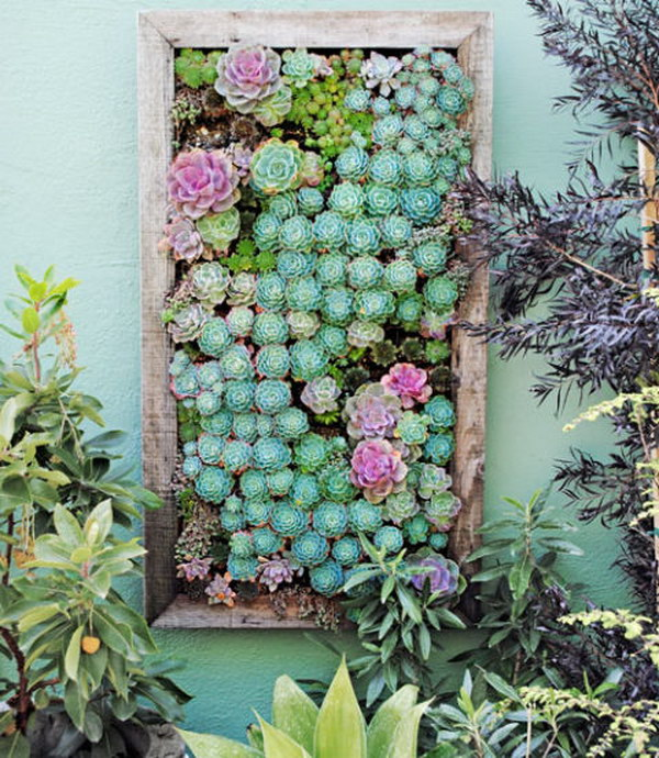DIY Framed Vertical Succulent Planter