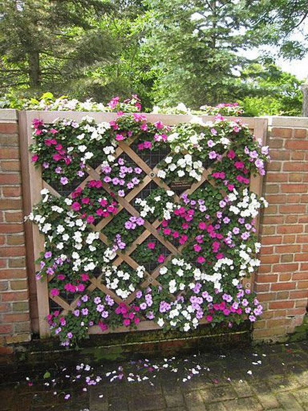 Lattice Fence Vertical Garden