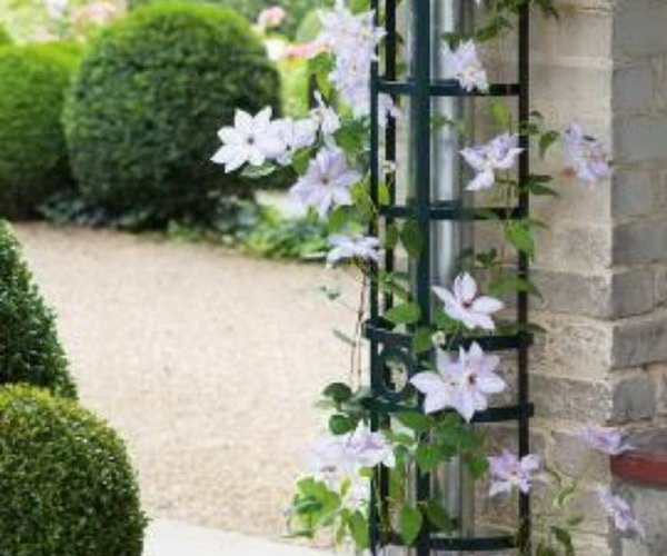 20 Useful And Easy Diy Garden Projects: 20+ Awesome DIY Garden Trellis Projects 2017