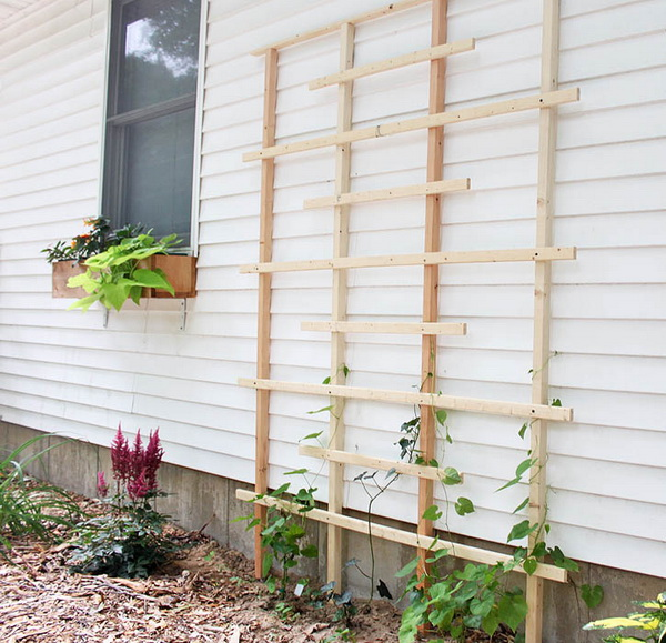 DIY Cedar Trellis for $20.