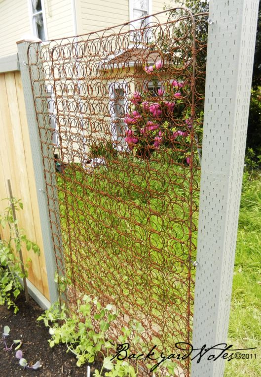 Ideas For Trellis In Garden Part - 36: Creative Way To Recycle Old Mattress Springs As Trellis For Your Garden.