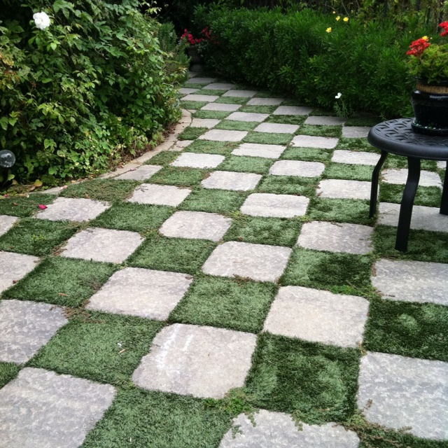 Checkerboard Pathway by Using Square Patio Stones and Then Plant the Earth in Between.