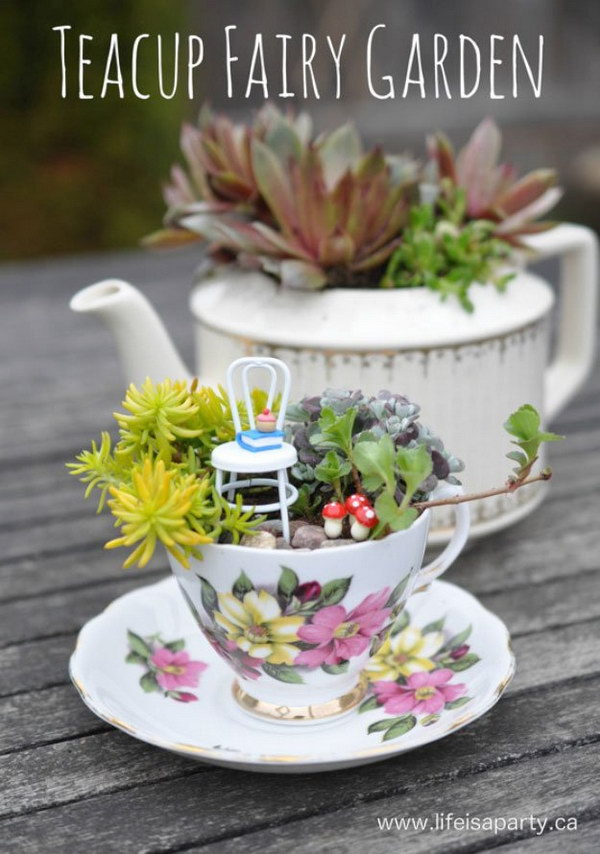 DIY Teacup Fairy Garden.