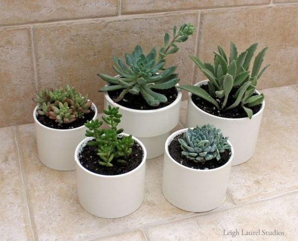 PVC Succulent Planters.