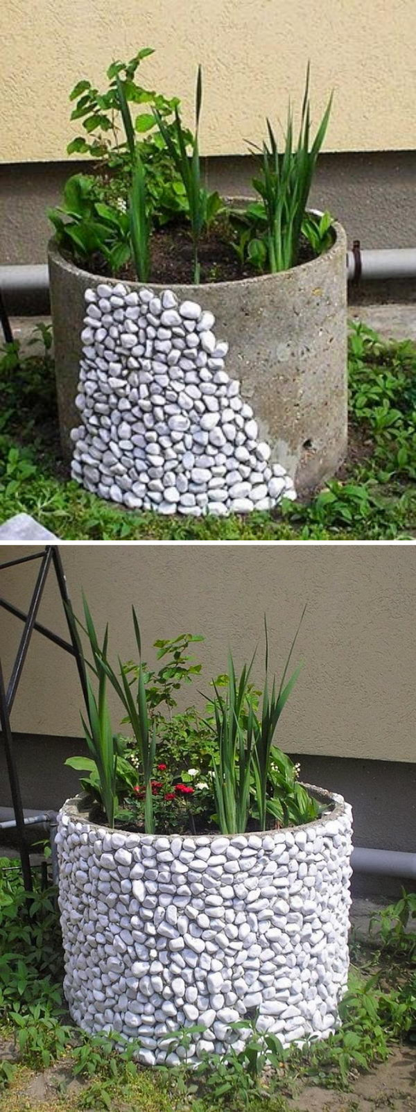 Cover Concrete Flower Pot with White Gravel to Get a Natural Look.