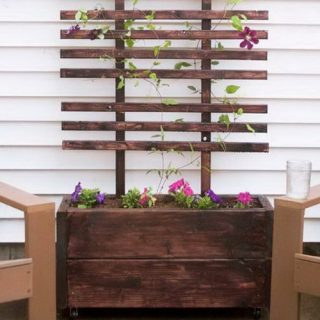 30+ DIY Trellis Ideas for Your Garden