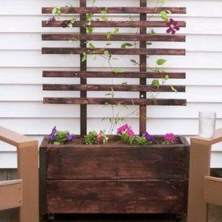 30+ DIY Trellis Ideas for Your Garden