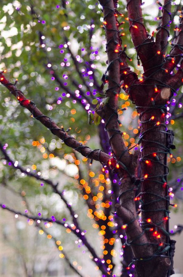 Orange and Purple Tree Halloween Lights.