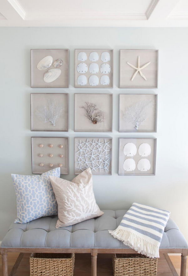 A Collection Of Framed Starfish, Sand Dollars, Seashells And Sea Fans For Nautical Wall Art.
