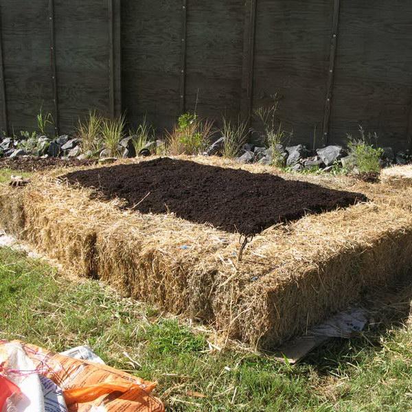 No-Dig Straw Bale Raised Garden Bed.