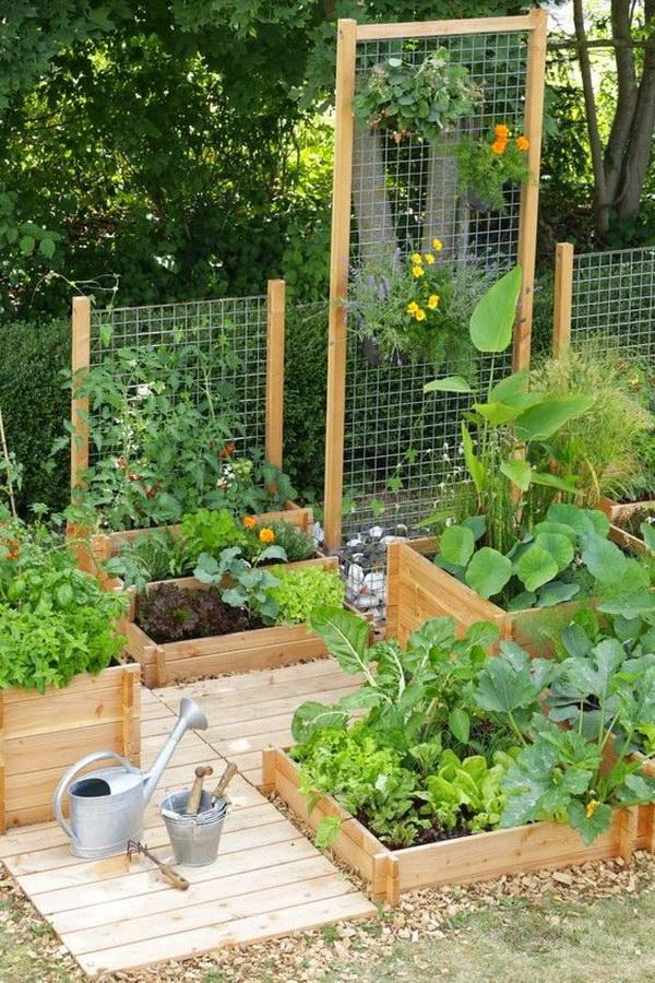 Raised Garden Beds With Trellis.