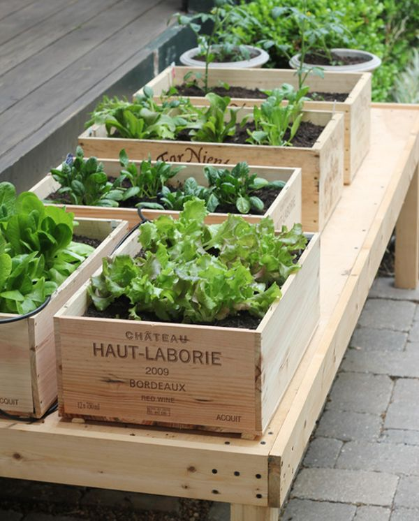Recycled Wine Box Raised Garden Beds.