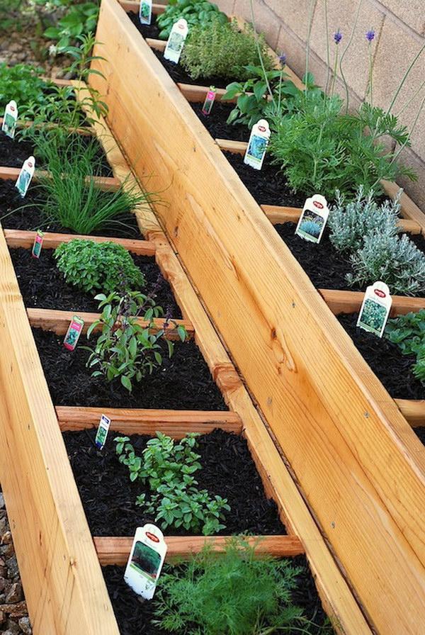 Divided Raised Herb Garden Bed.