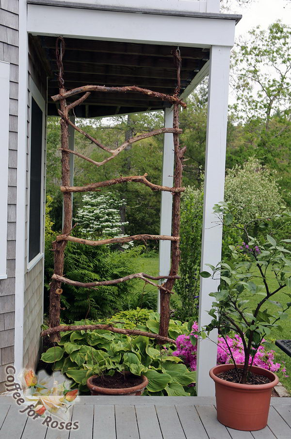 Trellis Ideas For Gardens 30 diy trellis ideas for your garden 2017 diy trellis made of branches workwithnaturefo