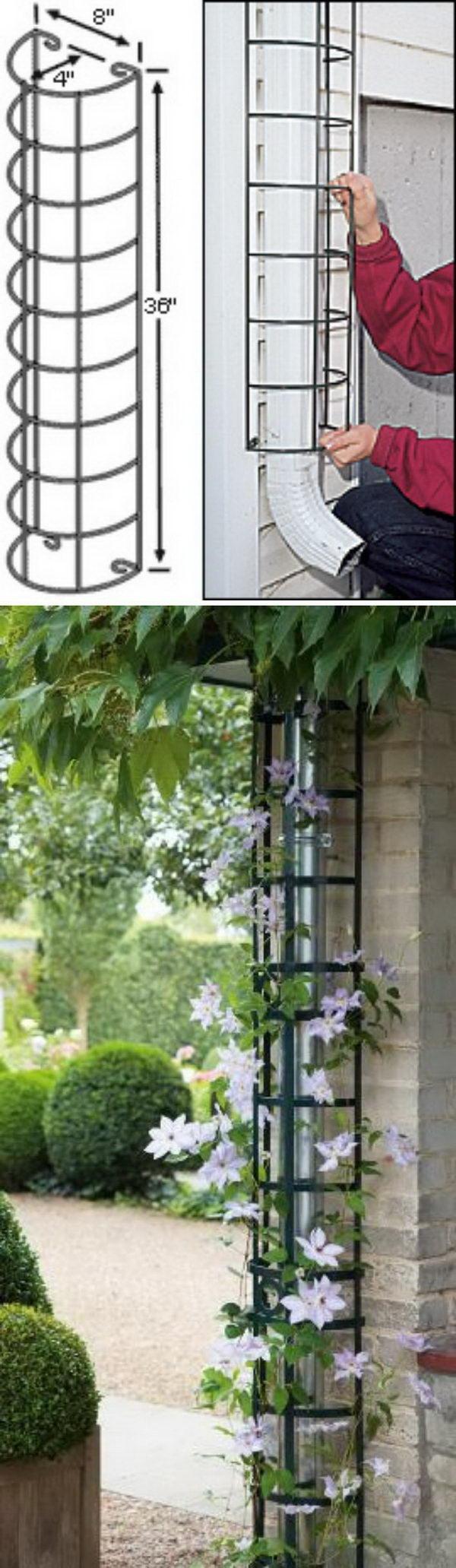 30 diy trellis ideas for your garden 2017 hide the downspout with a trellis solutioingenieria Images