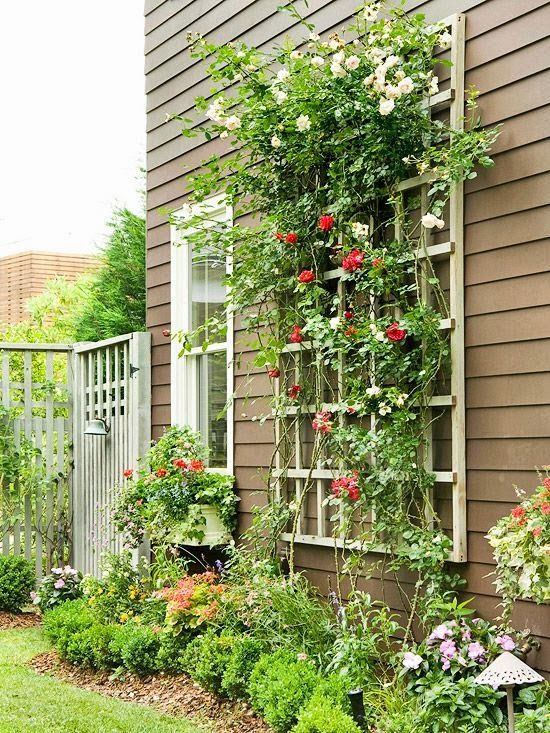 Wall Mounted Outdoor Trellis