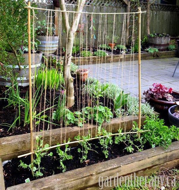 Cheap Ways To Do Your Garden: 30+ DIY Trellis Ideas For Your Garden 2017