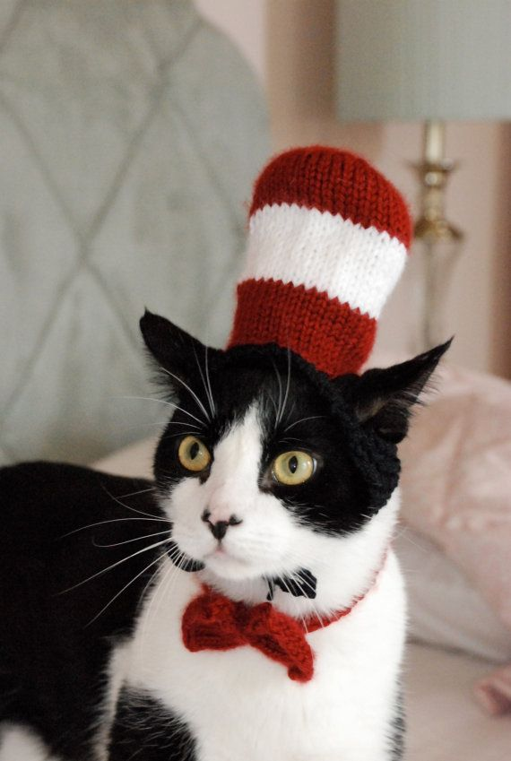 Cat in the Hat Halloween Costume.