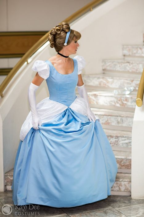 Disney Cinderella Costume.