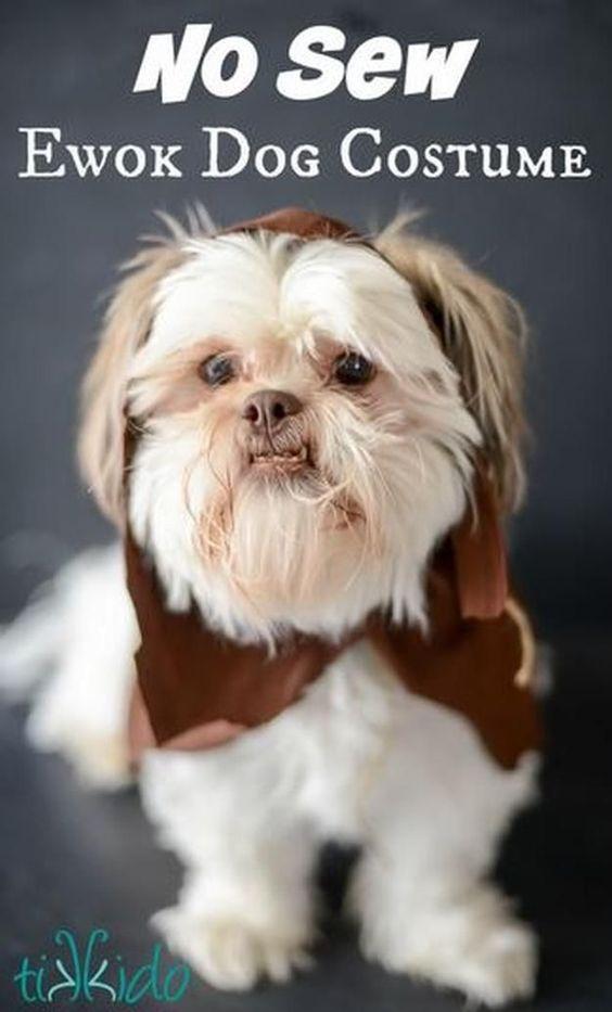 Star Wars Ewok DIY Dog Costume.
