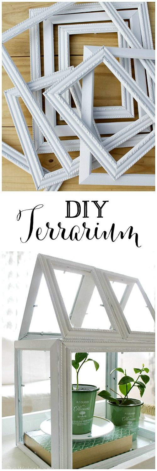 DIY Terrarium Made From Dollar Store Frames.