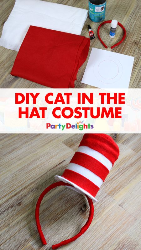 30 Diy Halloween Costumes 2017