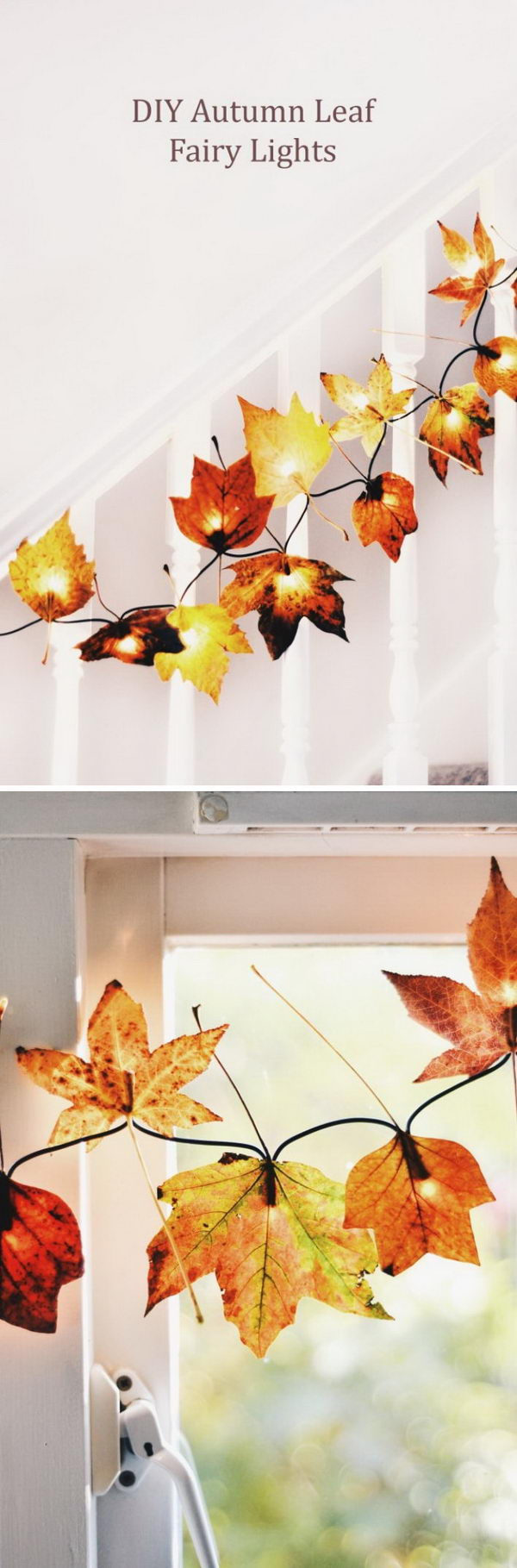 DIY Fall Leaf Fairy Lights.