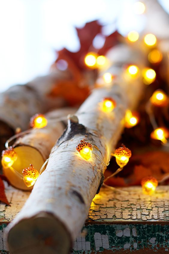 Acorn String Lights.