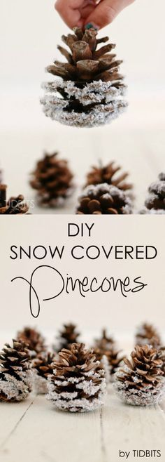 Easy And Inexpensive DIY Frosted Pinecones.