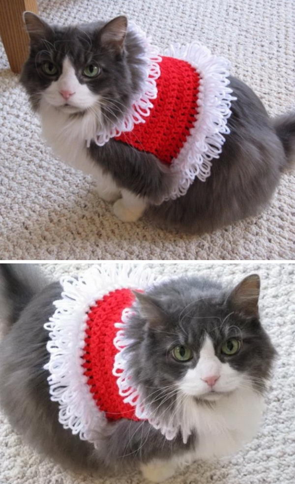 Santa Pet Sweater.