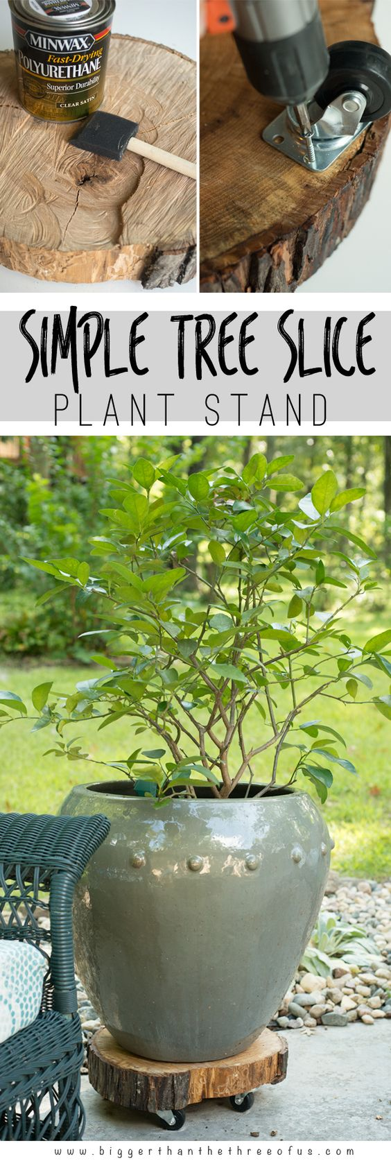 DIY Rolling Tree Slice Plant Stand.
