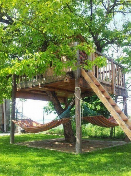 Tree House With Hammocks.