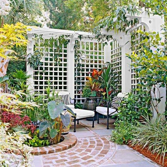 Privacy White Wooden Lattice With Climbing Plants.
