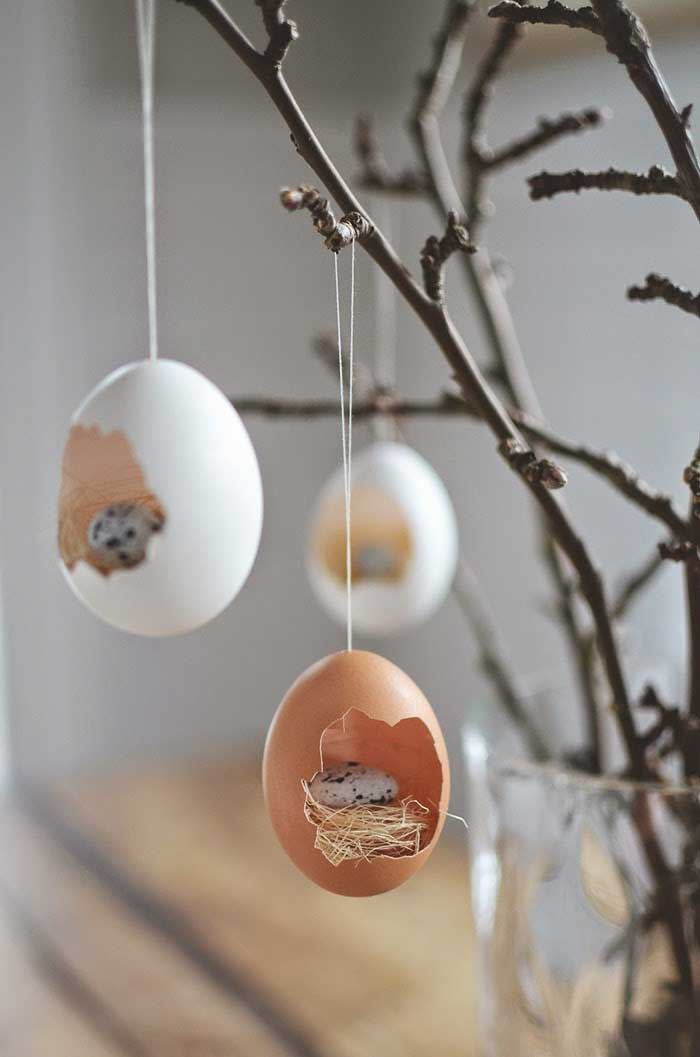 Cute Egg Terrarium.