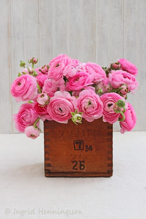 Spring Flowers In A Vintage Wooden Container.